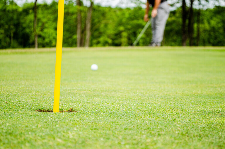 Best Driver for Average Golfers